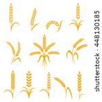 wheat ears or rice icons set.... | Shutterstock .eps vector #448130185