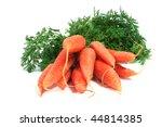 a bunch of carrots | Shutterstock . vector #44814385
