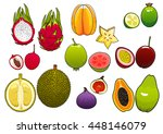 yellow star fruit and pink... | Shutterstock .eps vector #448146079