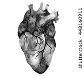 unusual human heart. hand drawn ... | Shutterstock . vector #448160911