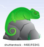 chameleon lizard cartoon... | Shutterstock .eps vector #448193341
