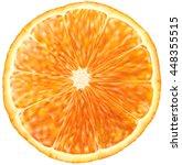 slice of orange fruit. vector... | Shutterstock .eps vector #448355515