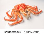large red king crab from... | Shutterstock . vector #448423984