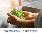 Male Hands Wash Spinach....