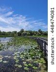 Point Pelee National Park Marsh ...