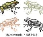 Frog 4 Versions