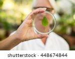 Female Scientist Holding Petri...