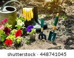 gardening tools and flowers in... | Shutterstock . vector #448741045