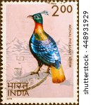 Small photo of Milan, Italy - June 18, 2016: Monal pheasant, wonderful bird, on indian postage stamp