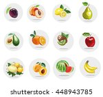 fruits collection stock vector... | Shutterstock .eps vector #448943785