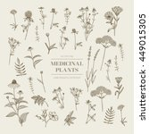vector hand drawn collection of ... | Shutterstock .eps vector #449015305