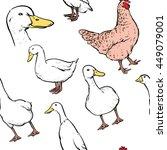 hand drawn duck and chicken... | Shutterstock .eps vector #449079001