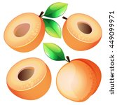composition of apricot on white ... | Shutterstock . vector #449099971