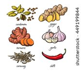 set of spices   garlic  ginger  ...   Shutterstock .eps vector #449199844