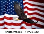 Bald Eagle Flying In Front Of...