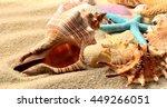 sea shells on the summer sandy... | Shutterstock . vector #449266051