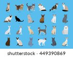 cat breeds  set  vector... | Shutterstock .eps vector #449390869