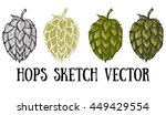hops vector visual graphic... | Shutterstock .eps vector #449429554