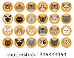 cat breeds  set  vector... | Shutterstock .eps vector #449444191