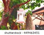 lantern hanging on tree.