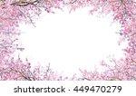 Branch Of Pink Cherry Flower...
