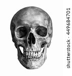 Black and white human skull ...