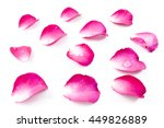 Stock photo pink rose petels isolated on white background 449826889