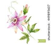 watercolor vector  flower... | Shutterstock .eps vector #449895607