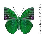 Small photo of Common Archduke (Lexias pardalis) under wings parts, the beautiful green butterfly in fancy color isolated on white background, jewel of nature