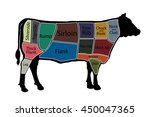 english cuts of beef. vector... | Shutterstock .eps vector #450047365