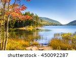 Beautiful Lake In Acadia...
