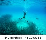 swimming with fish and turtles ... | Shutterstock . vector #450233851