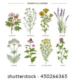 vector hand drawn collection of ... | Shutterstock .eps vector #450266365