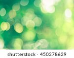 Bokeh Blur Leaf Background....