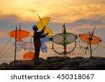 Silhouette Of Kite Boy Beach...