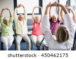 seniors doing exercises in a... | Shutterstock . vector #450462175