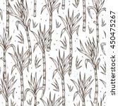 hand drawn sugarcane plants...   Shutterstock .eps vector #450475267