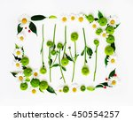 wreath frame from chamomile and ... | Shutterstock . vector #450554257