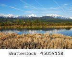 spring view of canadian rocky... | Shutterstock . vector #45059158
