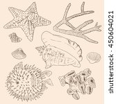 hand drawn sea set collection.... | Shutterstock .eps vector #450604021