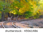 Three deer on an old railroad track - stock photo