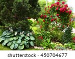 Stock photo beautiful formal garden close up photo with pine tree and red roses bush arch 450704677