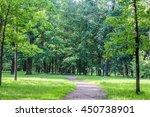 summer landscape | Shutterstock . vector #450738901
