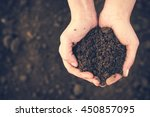 soil in hand  palm  cultivated... | Shutterstock . vector #450857095