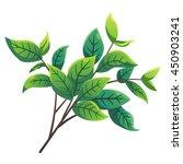 tree branch cartoon style ... | Shutterstock .eps vector #450903241
