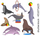 Marine Circus Animals Set....
