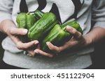 green pepper harvest. farmer... | Shutterstock . vector #451122904
