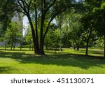 trunks of trees on a background ... | Shutterstock . vector #451130071
