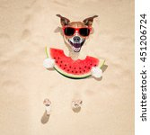 Stock photo jack russell dog buried in the sand at the beach on summer vacation holidays wearing red 451206724
