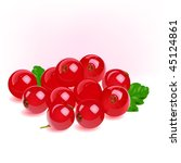 red currant | Shutterstock .eps vector #45124861